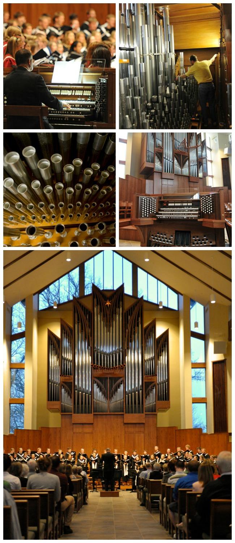Organ Collage